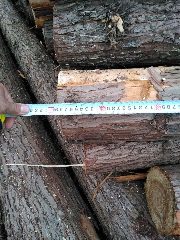 打桩原木1-6米